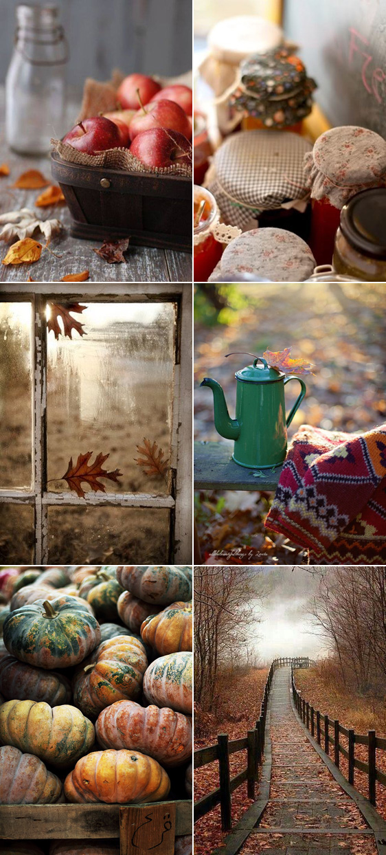 fall_collage